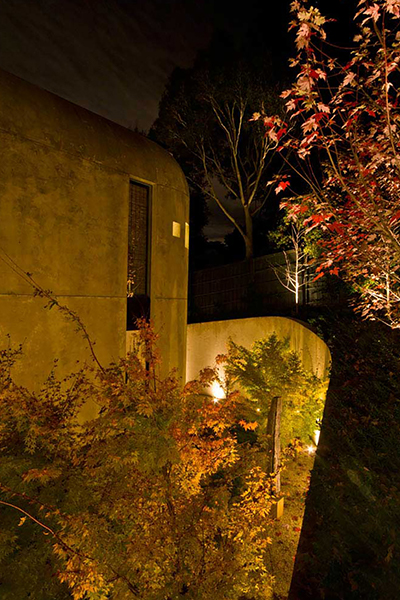 Gardens at Night Project in Focus Outdoor Lighting Hawthorn 6