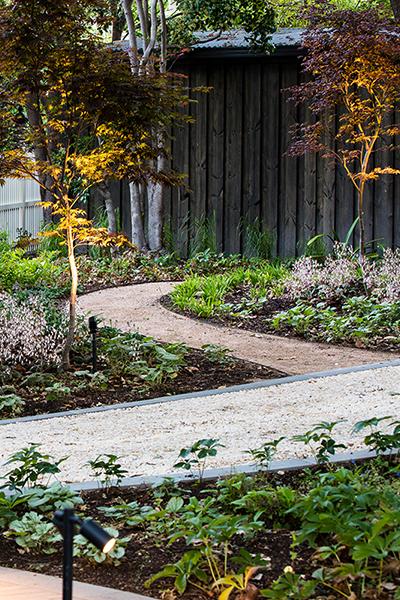 Gardens at Night Project in Focus Deepdene 9