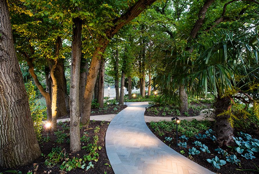 Gardens at Night Project in Focus Deepdene path lighting 6