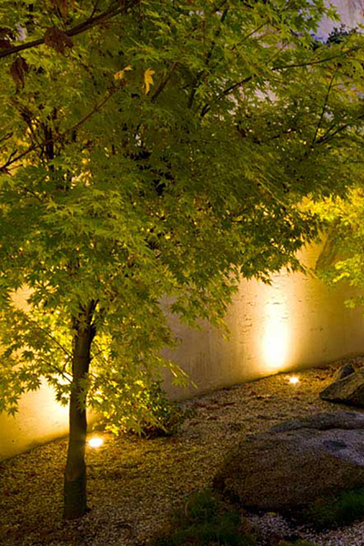 Gardens at Night Project in Focus Outdoor Lighting Hawthorn 3