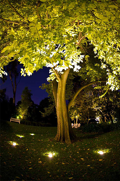 Gardens at Night Project in Focus Outdoor Lighting Hawthorn 5
