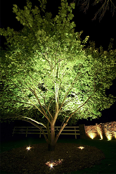 Gardens at Night Project in Focus Outdoor Lighting Mainridge 3