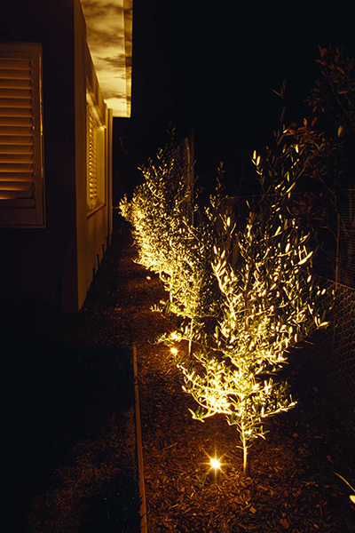 Gardens at Night Project in Focus Outdoor Lighting Portsea 2