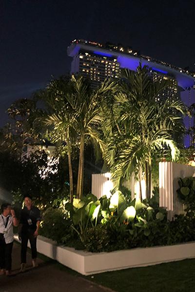 Gardens at Night Singapore Garden Festival 2018 outdoor lighting