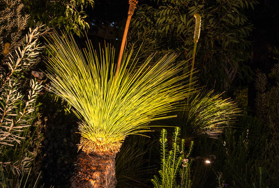 MIFGS 2018 Gardens by Twilight Gardens at Night 16