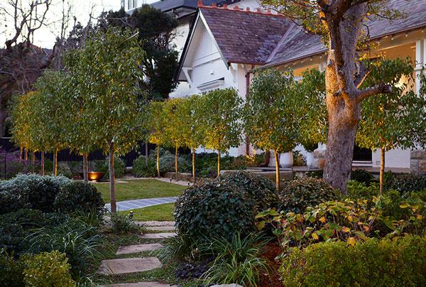 Gardens-at-Night_Landscape-Lighting_Outdoor-Lighting_Australia Inspired Exteriors